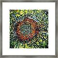 Physiological Supernova Framed Print