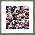 Pinecone Framed Print
