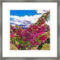 Pink Bush Framed Print by Lisa Cortez