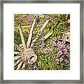 Pioneer Blossoms - Casper Wyoming Framed Print