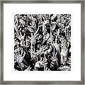 Pit Of Hell Framed Print