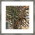 Pjazza In Mdina Framed Print
