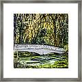 Plantation Bridge Framed Print