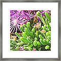 Plants Flowers Framed Print