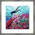 Playing With The Sea Turtles Framed Print