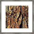 Plenty Of Small Dried Fishes On A Stack Framed Print
