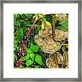 Poke And Bracket Fungi Framed Print