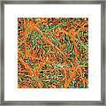 Pollock's Carrots Framed Print