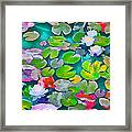 Pond Lily 5 Framed Print