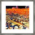 Pop Art B06 Framed Print
