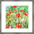 Poppies Collage I Framed Print