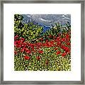 Poppies In Remembrance Framed Print