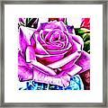 Poppin Purple Rose Framed Print