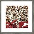 Winter Squirrel Framed Print