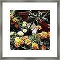 Pots Of Gold Framed Print