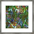 Profusion Of Colors Framed Print