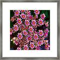 Promising Pink Petals Abstract Garden Art By Omaste Witkowski Framed Print