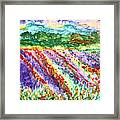 Provence France Field Of Flowers Framed Print