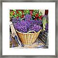 Provence Lavender Framed Print