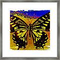 Psychedelic Butterfly Framed Print