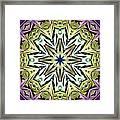 Psychic Gatekeeper Framed Print