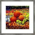 Pumpkin Love Framed Print