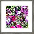 Purple And White Irises And Pink Flowers Framed Print