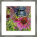 Purple Coneflowers By Former Railroad Depot In Pipestone-minnesota Framed Print