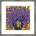 Purple In The Warm Glow Framed Print