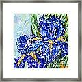 Purple Irises Framed Print