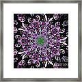 Purple Lilac Kalidescope Framed Print