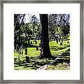 Quechee Vermont Cemetary Framed Print