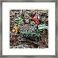 Rain Forest Cafe Signage Walt Disney World Framed Print