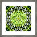 Lluvia Mandala Framed Print