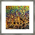 Rainbow Distortion 1 Framed Print