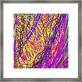 Rainbow Divine Fire Light Framed Print