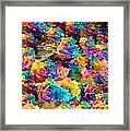 Rainbow Roses Framed Print