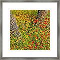 Ranch Wildflowers And Trees 2am-110522 Framed Print