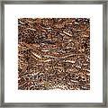 Rattle Snake Round-up Framed Print