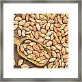 Raw Cacao Beans Framed Print