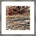 Recycled Wire 3 Framed Print