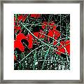 Red An Black Poppies 1 Framed Print