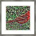 Red Bird Art Framed Print