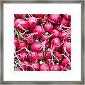 Red Radishes  Framed Print