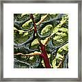 Red River Through Green Hills Framed Print