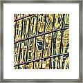 Reflection 11 Framed Print