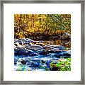 Reflection Of Autumns Natural Beauty Framed Print