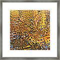 Reflections In Gold Framed Print