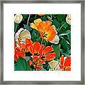 Rembrant's Garden Framed Print