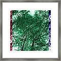 Rgb Trees Framed Print